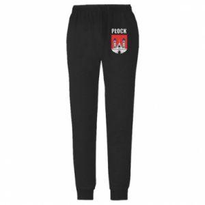 Męskie spodnie lekkie Plock emblem