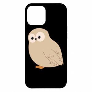 Etui na iPhone 12 Pro Max Plump owl
