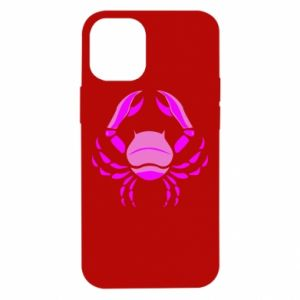 iPhone 12 Mini Case Cancer blue or pink