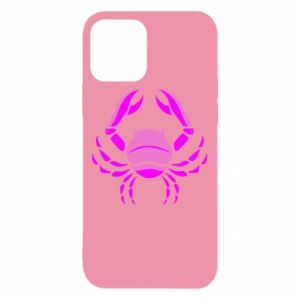iPhone 12/12 Pro Case Cancer blue or pink