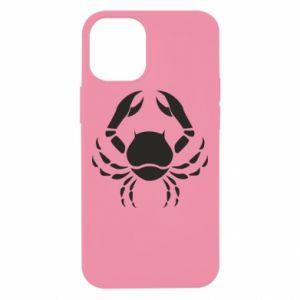 iPhone 12 Mini Case Cancer
