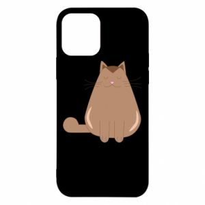 Etui na iPhone 12/12 Pro Relaxing cat