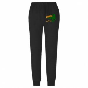 Męskie spodnie lekkie Roarrr - PrintSalon