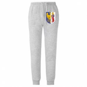 Męskie spodnie lekkie Ruda Śląska herb