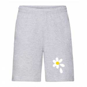 Men's shorts Chamomile