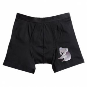 Boxer trunks Shy koala