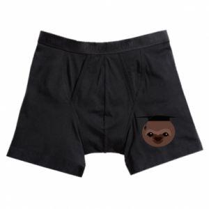 Boxer trunks Sloth student