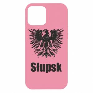 iPhone 12 Pro Max Case Slupsk