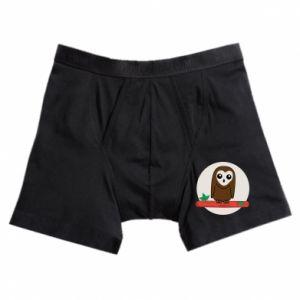 Boxer trunks Funny owl