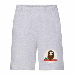Men's shorts Funny owl