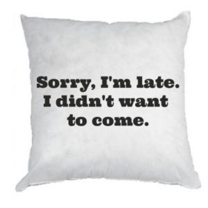 Pillow Sorry, i'm late