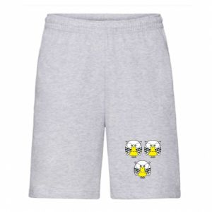 Men's shorts Owls - PrintSalon
