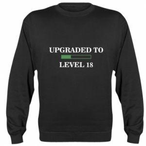 Sweatshirt Upgraded to level 18