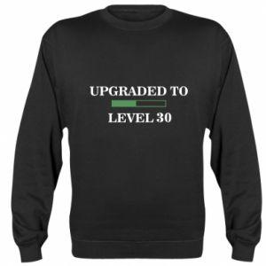 Sweatshirt Upgraded to level 30
