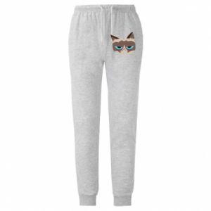 Męskie spodnie lekkie Very dissatisfied cat - PrintSalon