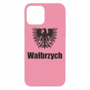 iPhone 12 Pro Max Case Walbrzych
