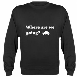Bluza (raglan) Where are we going