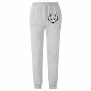 Męskie spodnie lekkie Big wolf