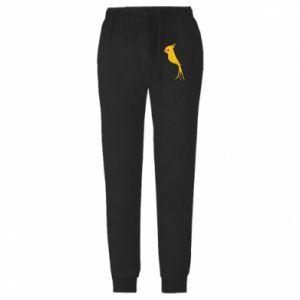 Spodnie lekkie męskie Yellow parrot