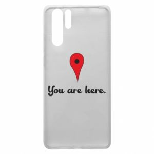 Huawei P30 Pro Case You are here