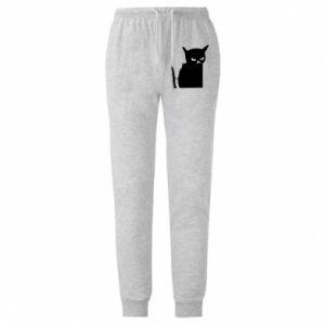 Męskie spodnie lekkie Angry cat
